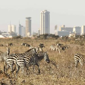 Top Flight Destinations - Nairobi Flights